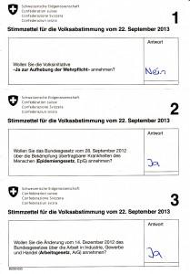 Dailytalk-Abstimmungsempfehlung22092013Bund