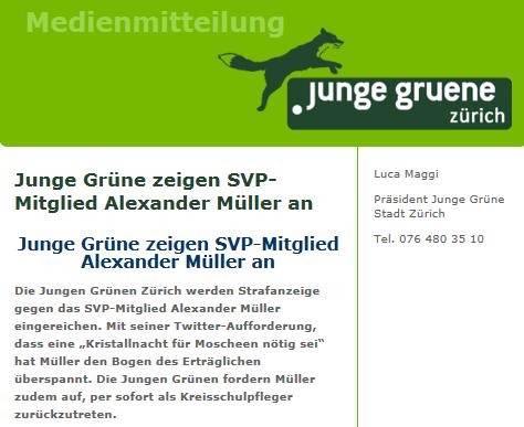MM_JungeGrueneZH_24062012